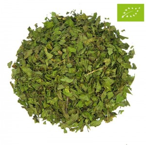 MOROCCAN MINT SP